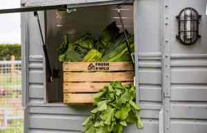 Fresh and Wild Local Grower sustainable 2